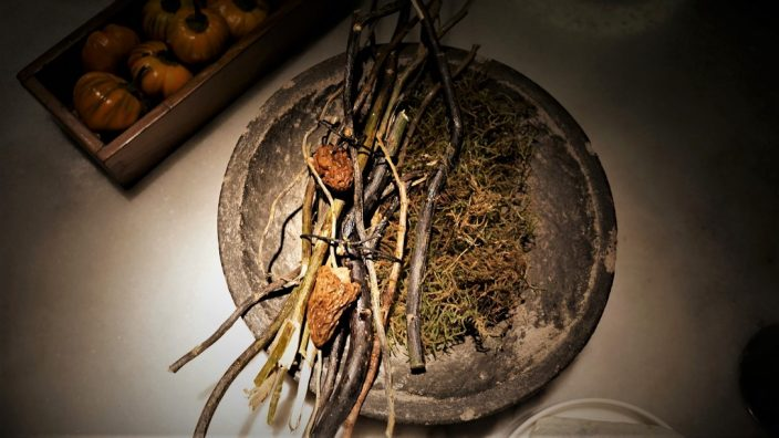 Aramburu Morel Mushrooms