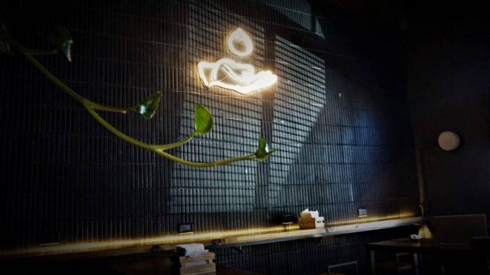 KOI Dumplings (5)