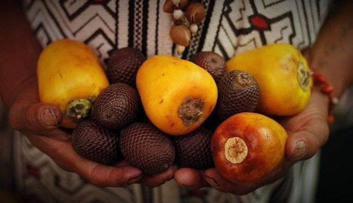 Amazonian-fruits