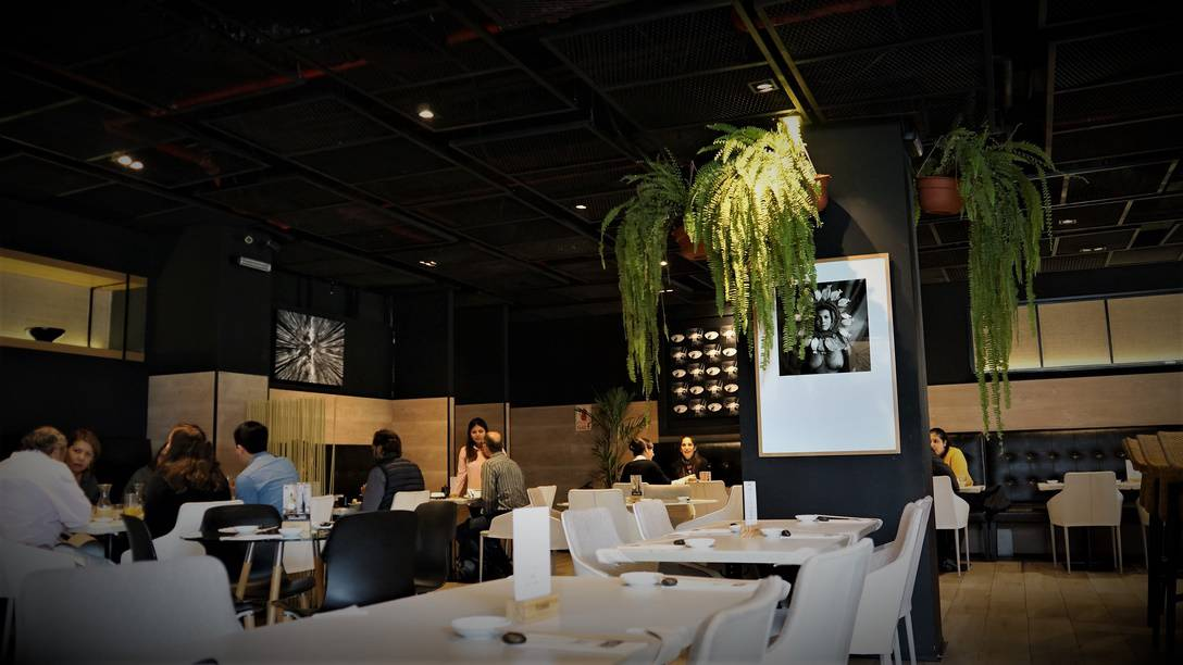 Toshi Lima Peru Nikkei Cuisine (2)