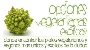 Opciones vegetarianas exoticas en Santiago