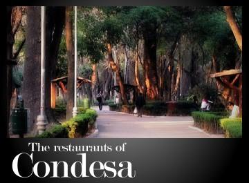 The Restaurants of Colonia Condesa