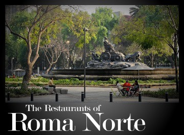 The best restaurants in Roma Norte - Mexico City